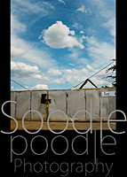 Soodlepoodle Startbild 2011- August