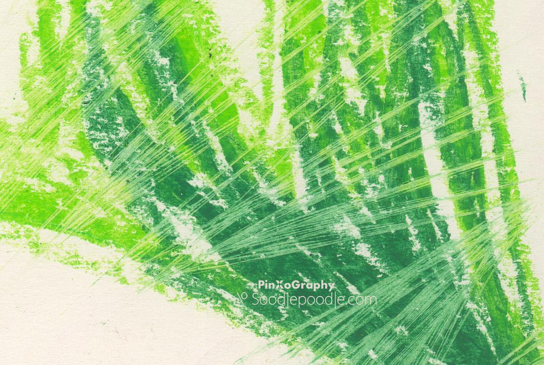 Stilleben mit fadenumsponnener Frühlingsagave im Lichtbad