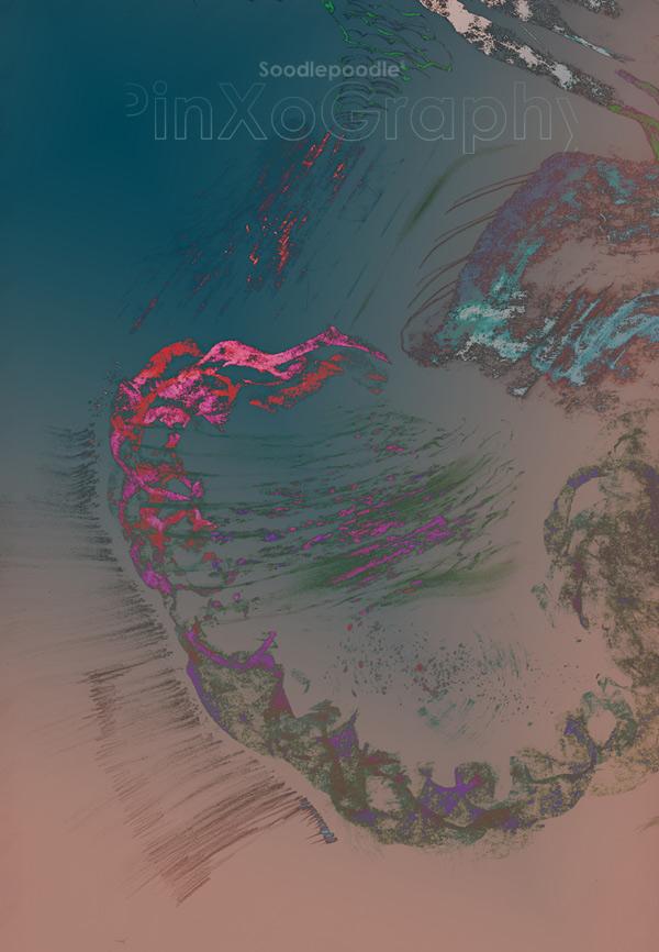 ntr-scanp-160323-313b-rec3