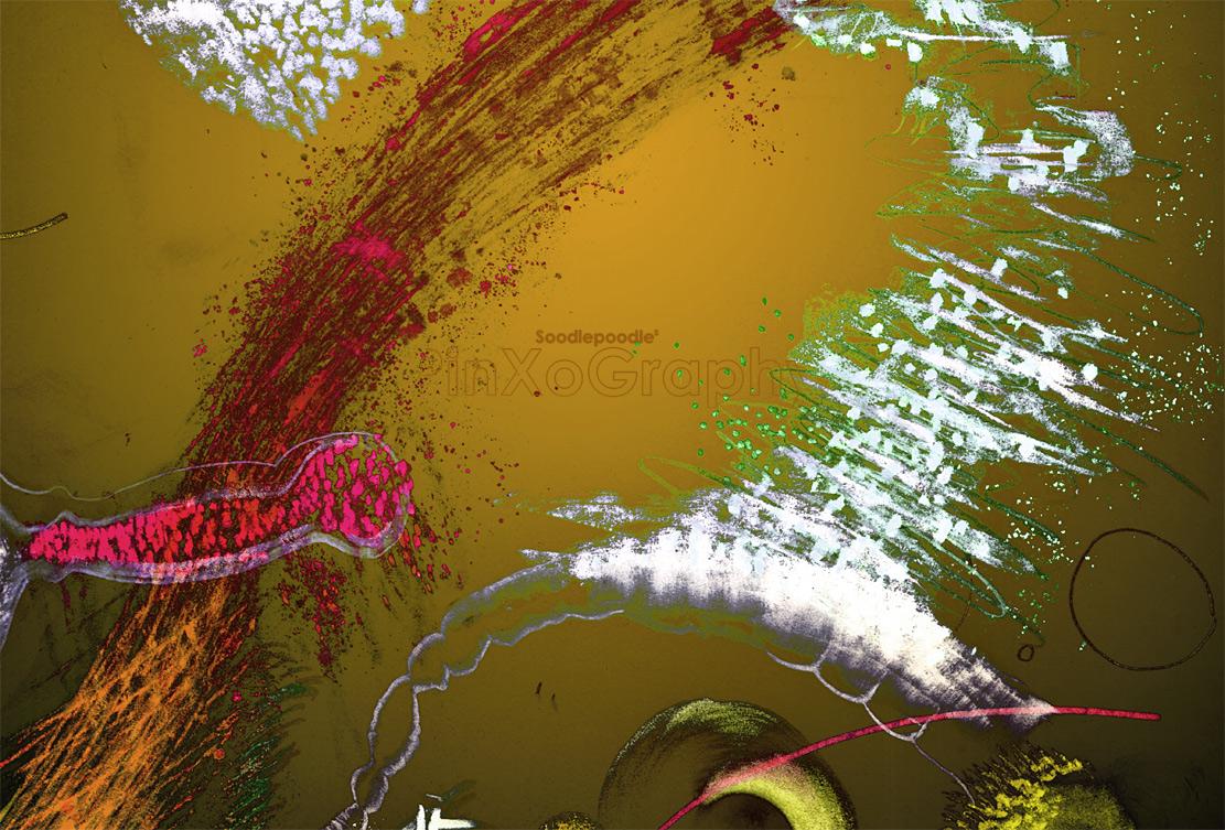 ntr-scanp-160803-374f-rvr4