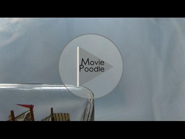 moviepoodle_1040639
